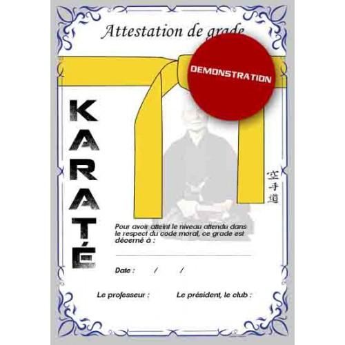 Certification yellow belt