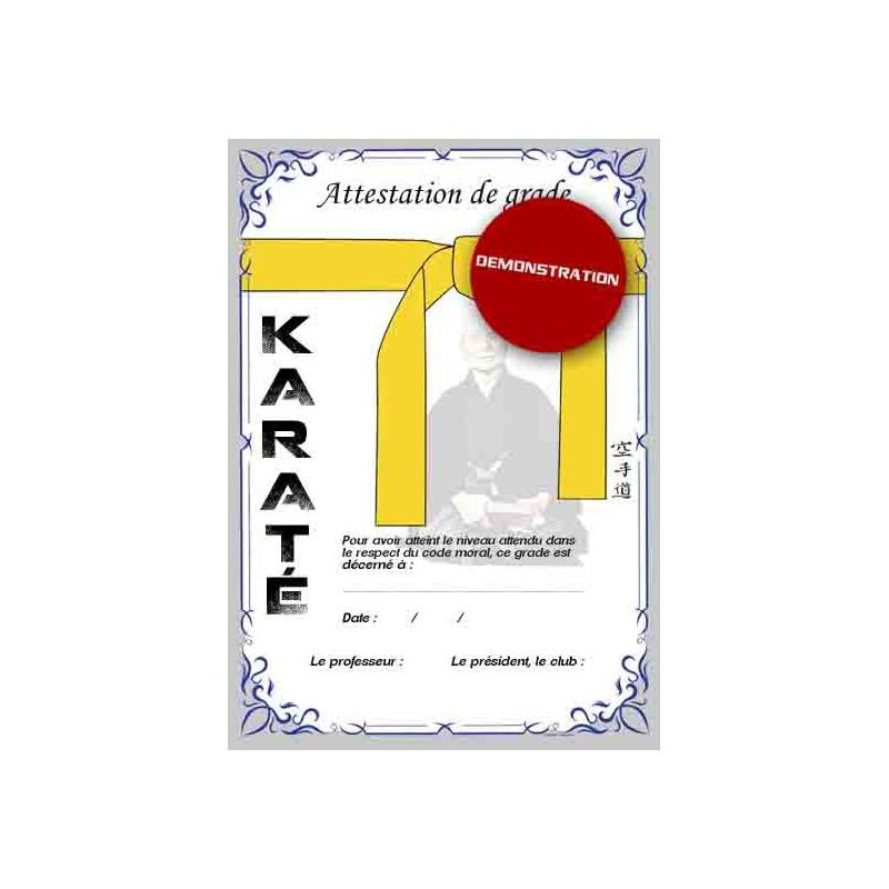 Certificazione cintura gialla