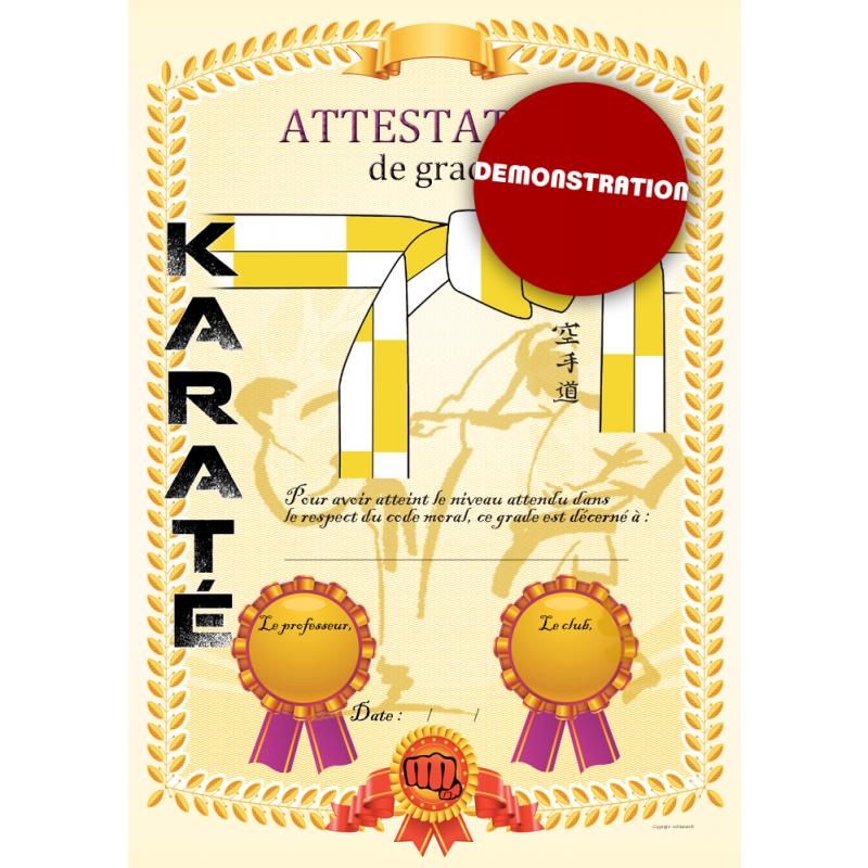 Certification white belt yellow