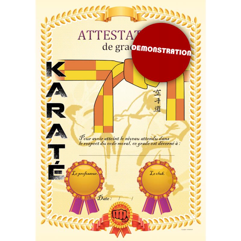 Certification yellow belt orange