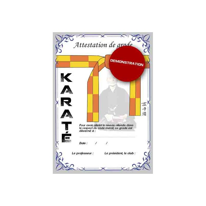 Certification yellow belt orange