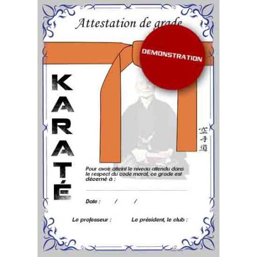 Certificate orange belt