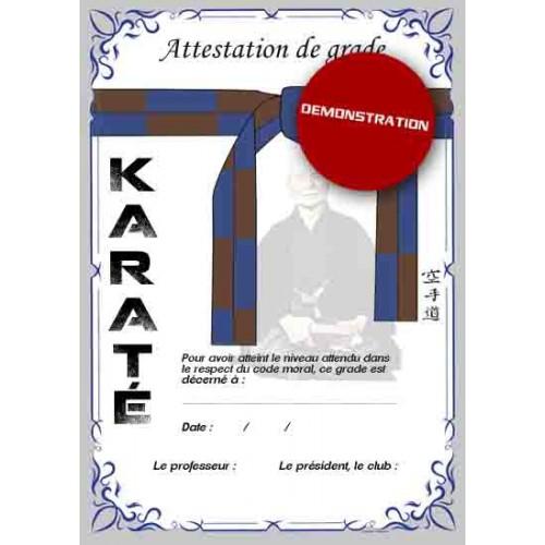 Certification blue belt brown