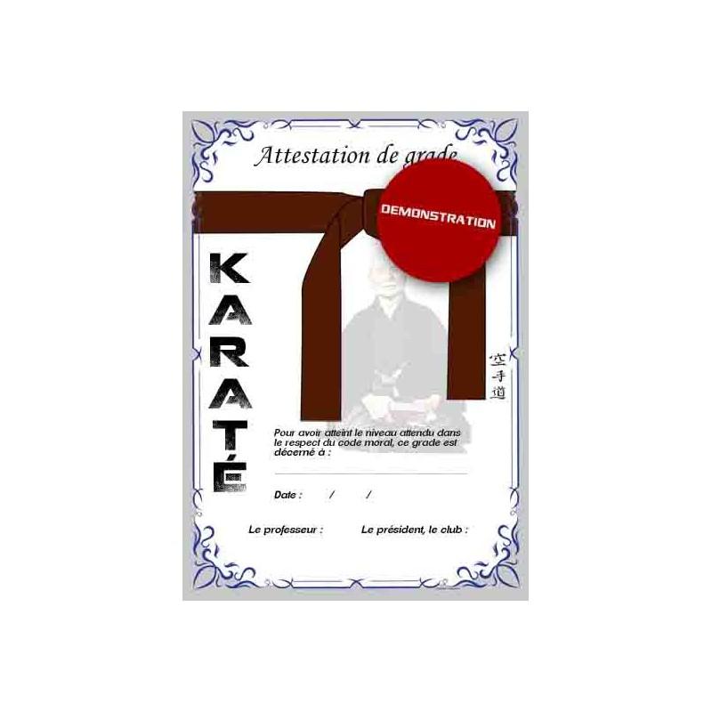 Certificate brown belt